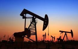 Giá dầu tăng cao vì căng thẳng Iran