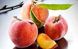 Đào - quả ngọt mùa hè