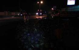 Xe tải lật, hàng ngàn trái dừa đổ trên cao tốc TP.HCM – Trung Lương
