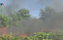 Chưa dập tắt hoàn toàn vụ cháy rừng keo ở Quảng Nam