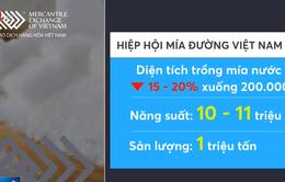 Giá đường kỳ hạn tháng 10/2019 tăng 1,21%