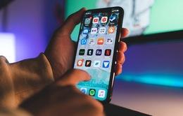 Một phiên bản iPhone giá rẻ sẽ được ra mắt vào năm 2020