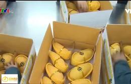 Nhiều rào cản để đưa nông sản Việt sang châu Âu