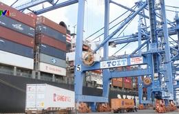 Tồn gần 14.000 container phế liệu tại các cảng biển