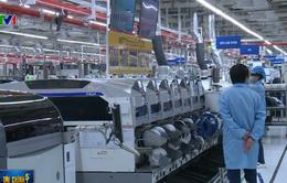 Chỉ 300 DN công nghiệp hỗ trợ Việt có thể tham gia chuỗi cung ứng toàn cầu