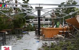 Giông lốc lớn tại Hy Lạp, 7 người thiệt mạng