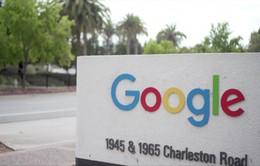 Google thừa nhận một đối tác làm rò rỉ dữ liệu âm thanh