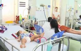 Sốt xuất huyết tăng cao ở vùng nông thôn Trà Vinh