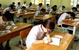 Tổng cục Giáo dục nghề nghiệp lên tiếng về việc 45 trường đại học phải dừng tuyển sinh hệ CĐ, TC
