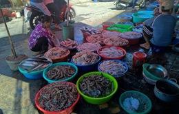 ĐBSCL: Nhiều mặt hàng nông, thủy sản giảm giá mạnh