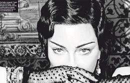 Madonna không màng đến các giải thưởng