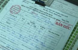Kỷ luật cán bộ Đồng Nai cấp giấy phép vận chuyển heo bị dịch tả Châu Phi