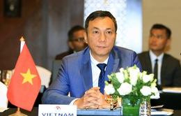 Phó Chủ tịch VFF Trần Quốc Tuấn đảm nhiệm vị trí Chủ tịch Ủy ban thi đấu AFC