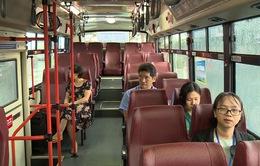 Cần Thơ đầu tư 135 xe bus trong năm 2019