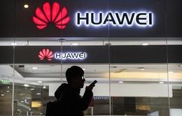 Huawei thừa nhân bị tổn thương sau lệnh cấm của Mỹ