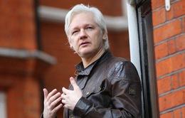 Cựu Tổng thống Ecuador xác nhận nhà sáng lập WikiLeaks đã can thiệp vào bầu cử Mỹ