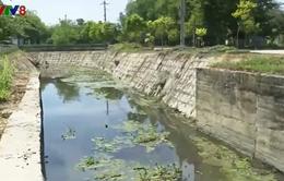 Quảng Ngãi: Xác định nguyên nhân ô nhiễm nặng tuyến kênh Tư Nghĩa