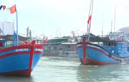 Phát động chương trình Hải quân làm điểm tựa cho ngư dân