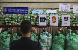 Châu Á - Thái Bình Dương là thị trường ma túy đá lớn nhất thế giới