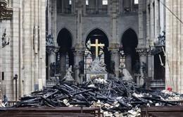 Pháp: Yêu cầu dọn dẹp các trường học gần Nhà thờ Đức Bà Paris
