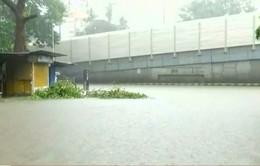 Thành phố Mumbai (Ấn Độ) tê liệt vì mưa lớn
