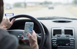 Nhắn tin khi lái xe bị phạt tiền tại bang Florida (Mỹ)