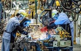 Hoạt động chế tạo sụt giảm trong tháng 6 tại nhiều nền kinh tế Á - Âu