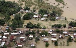 Gần 150 người thiệt mạng do lũ lụt tại Ấn Độ