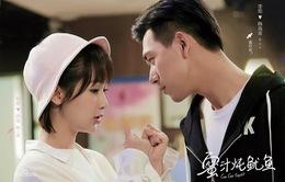 """""""Cá mực hầm mật"""" của Dương Tử vượt mặt phim của Trịnh Sảng trên BXH rating"""