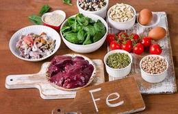 Những thực phẩm giúp bổ máu