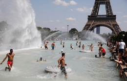 Nhiệt độ trung bình toàn cầu lập kỷ lục mới trong tháng 11