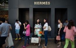 Hermes tăng trưởng doanh thu hai con số trong quý II/2019