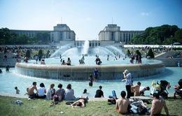 Nắng nóng và hạn hán kéo dài tại Pháp