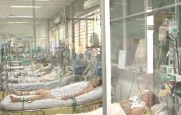 Nguy cơ lây lan kháng thuốc tại khoa hồi sức cấp cứu bệnh viện