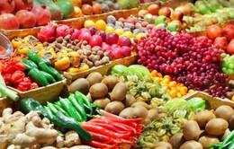 Cơ hội xuất khẩu nông sản Việt ra thị trường nước ngoài