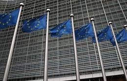 Pháp tuyên bố sẽ cùng các đối tác đáp trả nếu Mỹ trừng phạt hàng nhập khẩu của EU