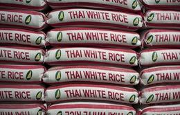 Xuất khẩu gạo Thái Lan sẽ giảm xuống mức thấp nhất 7 năm