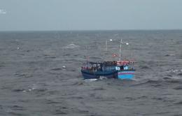 Tìm phương án khác cứu hộ tàu cá chìm tại Bạch Long Vĩ