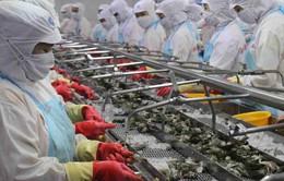 Đẩy mạnh xuất khẩu tôm sang các thị trường tiềm năng