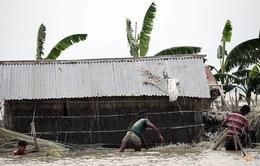 Mưa lũ nghiêm trọng tại Bangladesh