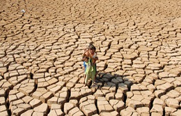 """Người dân tại miền Trung và ĐBSCL quay quắt trong cơn """"khát"""" nước"""
