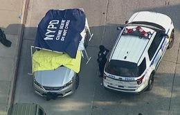 Đau lòng hai bé sinh đôi tử vong do bị bỏ quên trong xe hơi