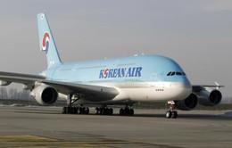Hãng hàng không Hàn Quốc dừng chặng bay tới Nhật Bản