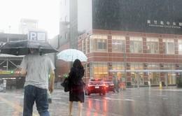 Nhật Bản sơ tán 800.000 người dân do mưa lớn