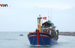 Cứu kịp thời ngư dân bị vỡ sọ khi đánh bắt trên biển