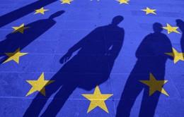 EU sẽ rút quyền tiếp cận thị trường đối với 5 quốc gia