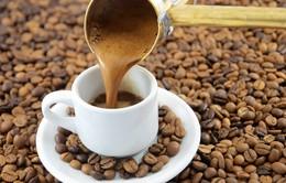 Giá cà phê hồi phục từ mức đáy hơn 1 tháng
