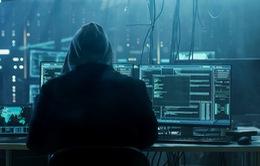 Thông tin cá nhân của 300 nghìn người Việt bị hacker rao bán trên Internet