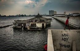 Indonesia có thể xây tường bao quanh thủ đô để ngăn biển xâm lấn