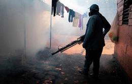 Guatemala ban bố báo động đỏ dịch sốt xuất huyết